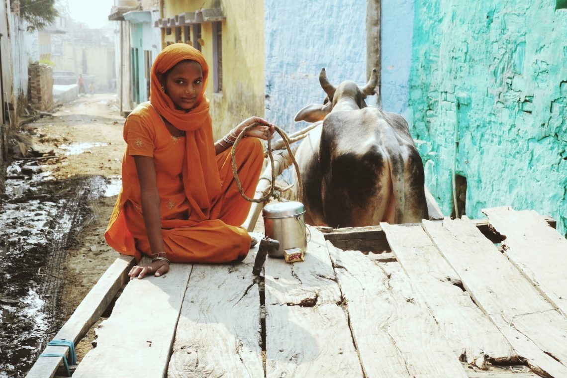 slums of india and a girl on a cart with a bull
